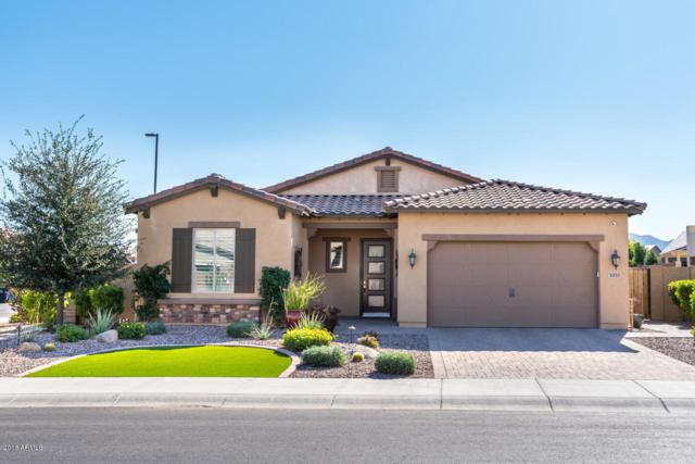 3311 E Myrtabel Way, Gilbert, AZ 85298 (MLS #5846637) :: Group 46:10