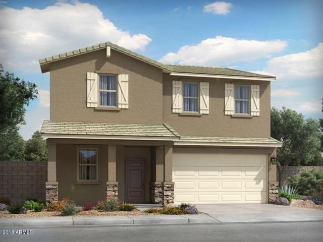 4069 W Copperleaf Drive, San Tan Valley, AZ 85140 (MLS #5846647) :: Revelation Real Estate