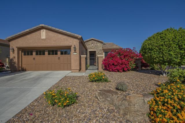 12932 W Caleb Road, Peoria, AZ 85383 (MLS #5846685) :: Brett Tanner Home Selling Team