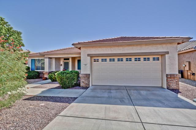 17687 N Coconino Drive, Surprise, AZ 85374 (MLS #5846705) :: Group 46:10