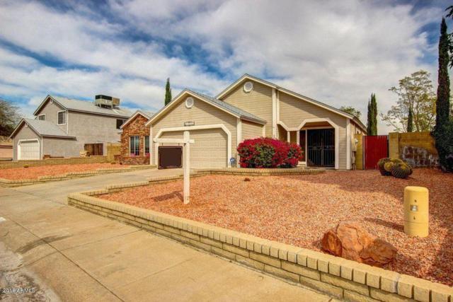 15263 N 63RD Drive, Glendale, AZ 85306 (MLS #5846706) :: Brett Tanner Home Selling Team