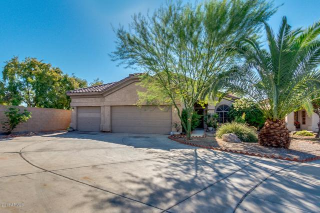 779 E Stottler Drive, Gilbert, AZ 85296 (MLS #5846763) :: Group 46:10