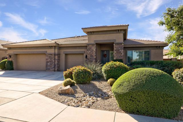 11323 E Solina Circle, Mesa, AZ 85212 (MLS #5846775) :: Group 46:10