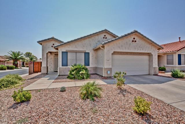17477 N Fairway Drive, Surprise, AZ 85374 (MLS #5846797) :: Group 46:10