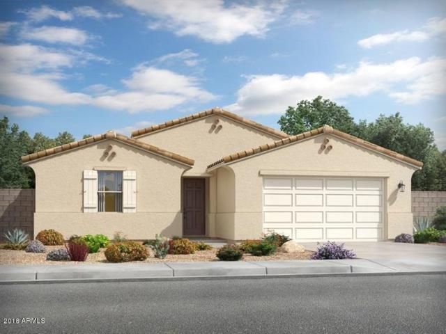 4081 W Dayflower Drive, San Tan Valley, AZ 85142 (MLS #5846802) :: Group 46:10