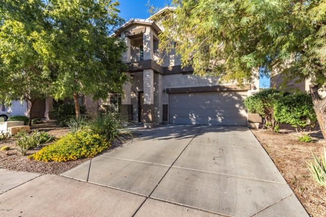 1130 E Desert Springs Way, San Tan Valley, AZ 85143 (MLS #5846804) :: Group 46:10