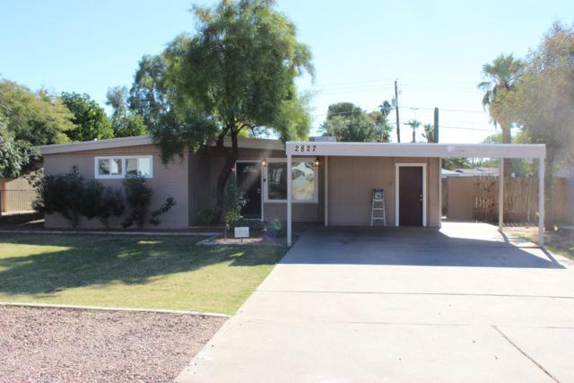 2827 E Osborn Road, Phoenix, AZ 85016 (MLS #5846812) :: Yost Realty Group at RE/MAX Casa Grande