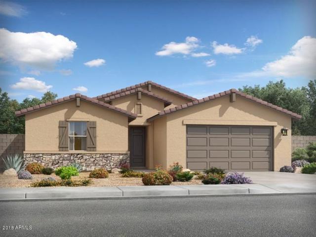 4166 W Dayflower Drive, San Tan Valley, AZ 85142 (MLS #5846813) :: Group 46:10