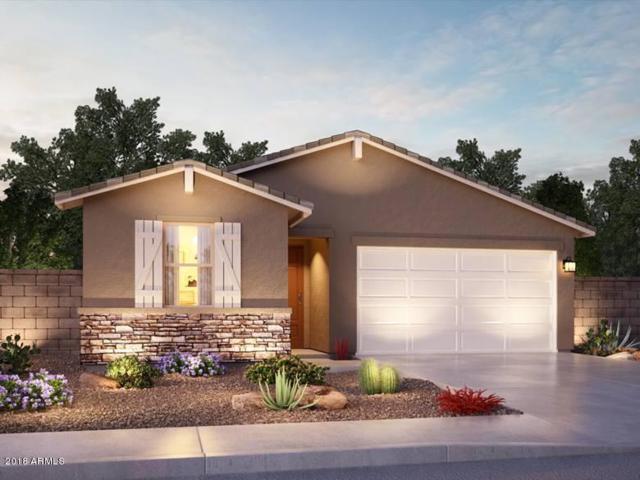 7224 N 124TH Lane, Glendale, AZ 85307 (MLS #5846834) :: Brett Tanner Home Selling Team