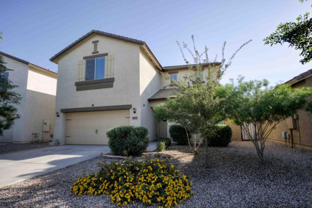 10339 E Sunflower Lane, Florence, AZ 85132 (MLS #5846840) :: Yost Realty Group at RE/MAX Casa Grande