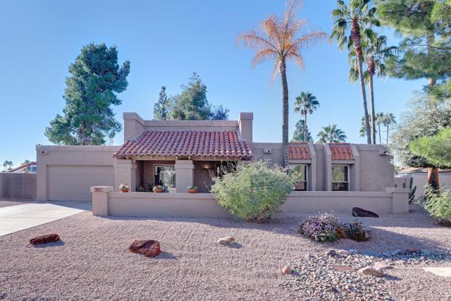 5041 E Redfield Road, Scottsdale, AZ 85254 (MLS #5846850) :: Group 46:10