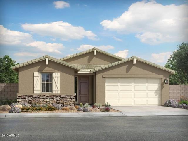 4012 W Dayflower Drive, San Tan Valley, AZ 85142 (MLS #5846867) :: The Bill and Cindy Flowers Team