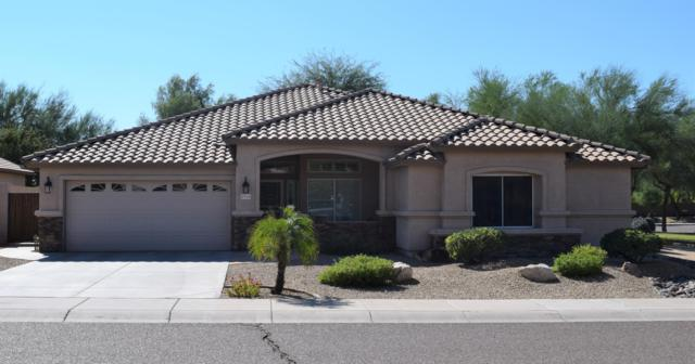 5965 W Bluefield Avenue, Glendale, AZ 85308 (MLS #5846891) :: Conway Real Estate