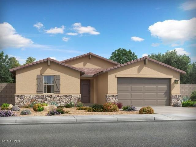 4046 W Dayflower Drive, San Tan Valley, AZ 85142 (MLS #5846893) :: The Bill and Cindy Flowers Team