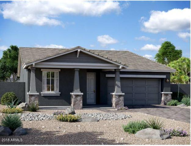 4496 S Mcclelland Drive, Chandler, AZ 85248 (MLS #5846902) :: Brett Tanner Home Selling Team