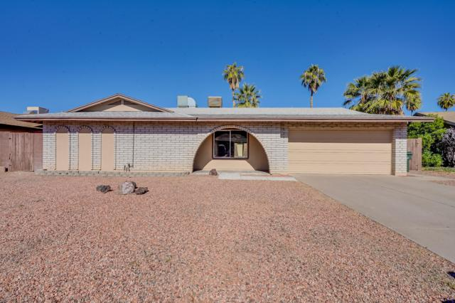 3950 W Garden Drive, Phoenix, AZ 85029 (MLS #5846903) :: Group 46:10