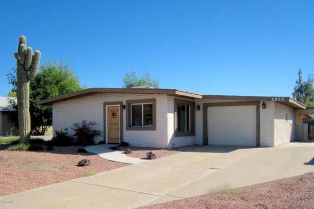 3829 S Roosevelt Street, Tempe, AZ 85282 (MLS #5846922) :: The Garcia Group