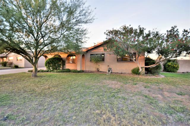3102 W Columbine Drive, Phoenix, AZ 85029 (MLS #5846933) :: Yost Realty Group at RE/MAX Casa Grande