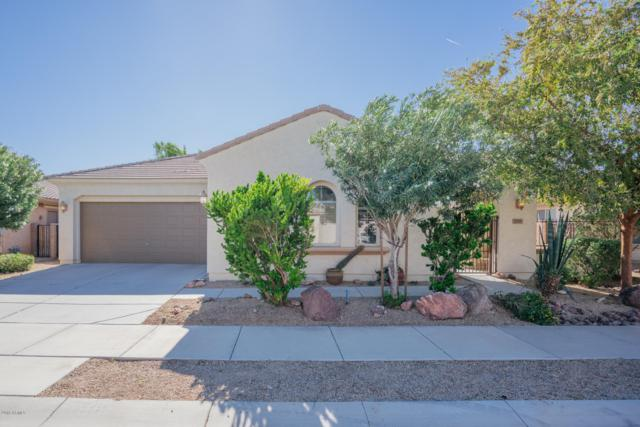 17375 W Grant Street, Goodyear, AZ 85338 (MLS #5846938) :: The AZ Performance Realty Team