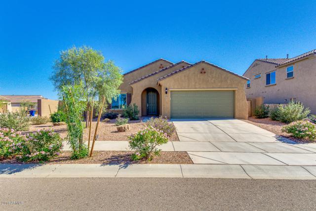 27513 N 175TH Drive, Surprise, AZ 85387 (MLS #5846942) :: Brett Tanner Home Selling Team