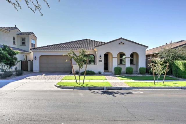 Mesa, AZ 85212 :: Team Wilson Real Estate