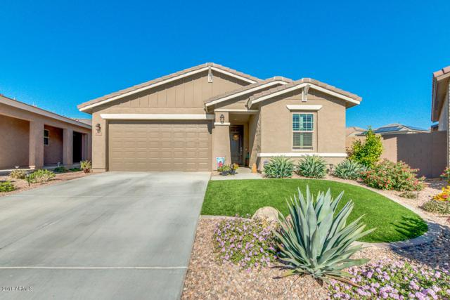 12112 W Briles Road, Peoria, AZ 85383 (MLS #5846964) :: Brett Tanner Home Selling Team