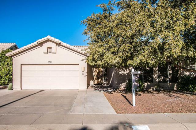 390 W Primoroso Drive, Gilbert, AZ 85233 (MLS #5846969) :: Brett Tanner Home Selling Team