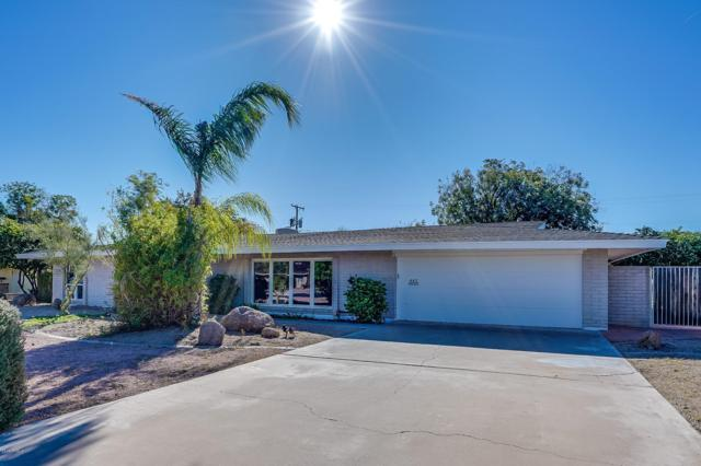 443 E 7TH Place, Mesa, AZ 85203 (MLS #5846970) :: Team Wilson Real Estate