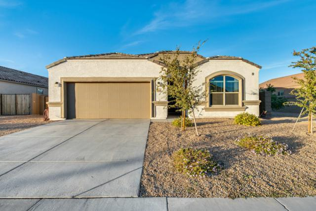 13550 W Desert Moon Way, Peoria, AZ 85383 (MLS #5846984) :: Brett Tanner Home Selling Team