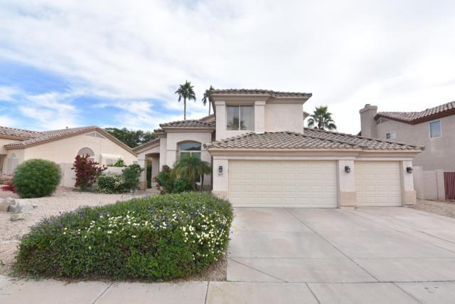 6127 W Irma Lane, Glendale, AZ 85308 (MLS #5846985) :: Brett Tanner Home Selling Team
