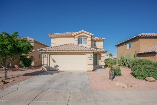 12216 W Columbine Drive, El Mirage, AZ 85335 (MLS #5846989) :: Team Wilson Real Estate