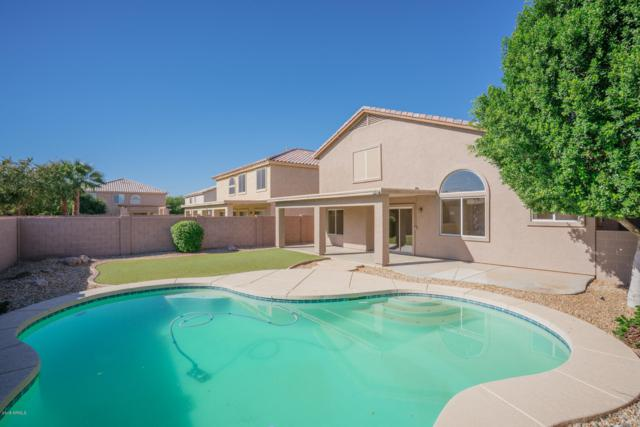 15627 W Calavar Road, Surprise, AZ 85379 (MLS #5846996) :: Brett Tanner Home Selling Team