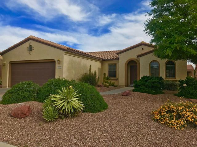 19351 N Tallowood Way, Surprise, AZ 85387 (MLS #5847005) :: RE/MAX Excalibur