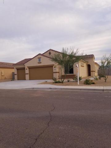 11967 W Rio Vista Lane, Avondale, AZ 85323 (MLS #5847022) :: Kelly Cook Real Estate Group