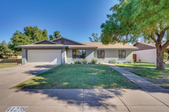 11239 N 32ND Avenue, Phoenix, AZ 85029 (MLS #5847028) :: Riddle Realty