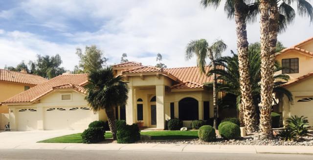 3240 S Ambrosia Drive, Chandler, AZ 85248 (MLS #5847029) :: Team Wilson Real Estate