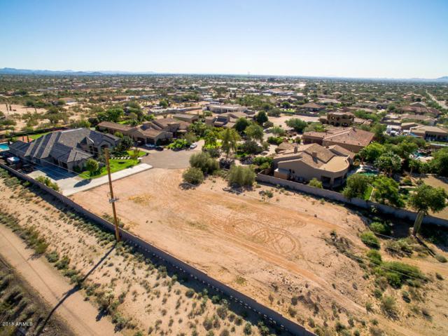 1336 N 104TH Place, Mesa, AZ 85207 (MLS #5847062) :: Team Wilson Real Estate