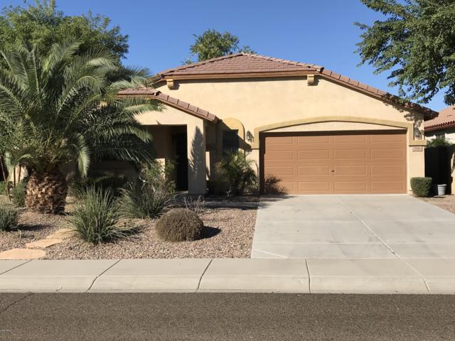 566 E Trellis Road, San Tan Valley, AZ 85140 (MLS #5847068) :: The Jesse Herfel Real Estate Group