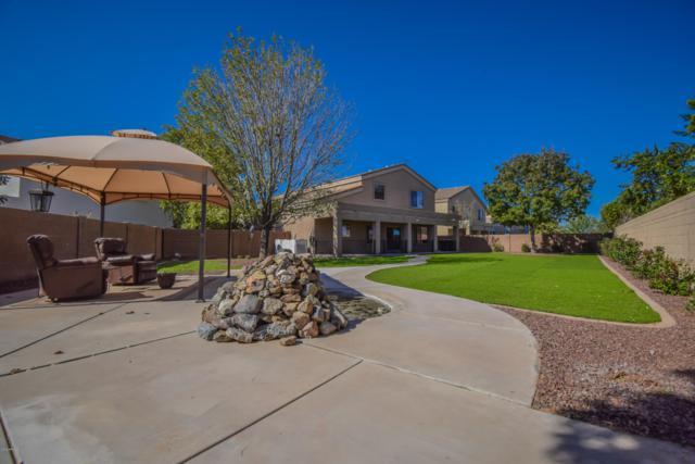 19145 N. San Pablo Street, Maricopa, AZ 85138 (MLS #5847069) :: Team Wilson Real Estate