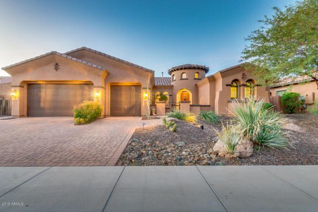 12648 W Pontebella Drive, Peoria, AZ 85383 (MLS #5847085) :: Yost Realty Group at RE/MAX Casa Grande