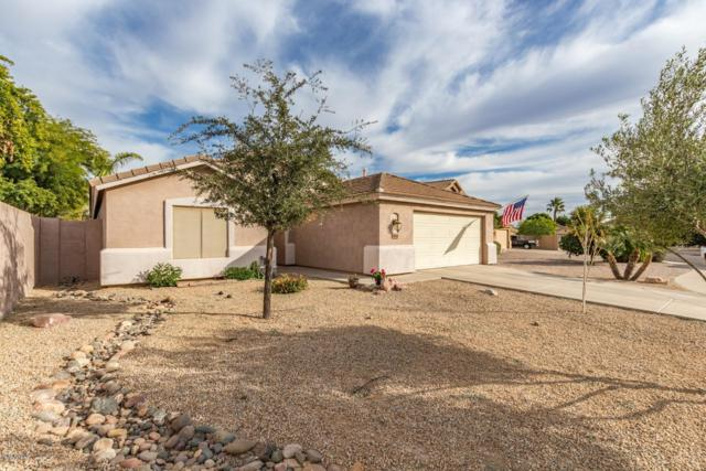6005 S Halsted Court, Chandler, AZ 85249 (MLS #5847106) :: The Garcia Group