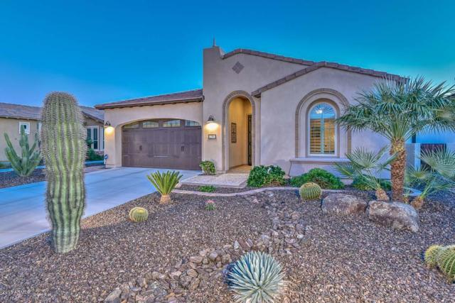 12953 W Roy Rogers Road, Peoria, AZ 85383 (MLS #5847123) :: Lifestyle Partners Team