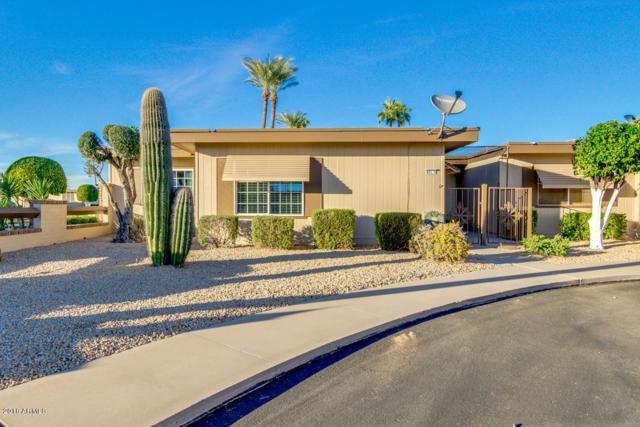 13621 N 98TH Avenue A, Sun City, AZ 85351 (MLS #5847128) :: Team Wilson Real Estate