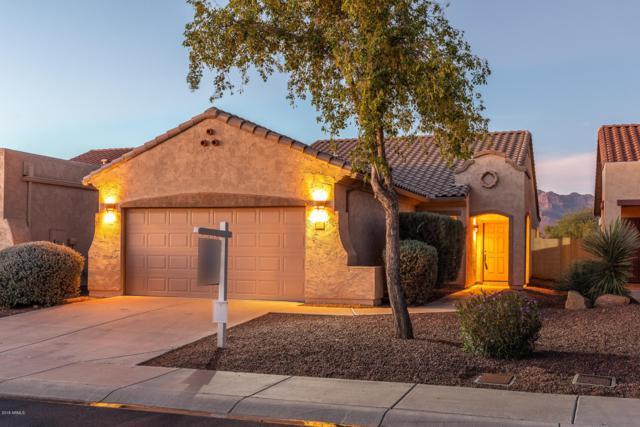 9878 E Rugged Mountain Drive, Gold Canyon, AZ 85118 (MLS #5847129) :: Yost Realty Group at RE/MAX Casa Grande