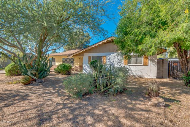 6544 N 16TH Drive, Phoenix, AZ 85015 (MLS #5847130) :: Yost Realty Group at RE/MAX Casa Grande