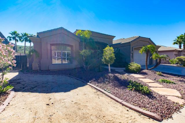 401 W Desert Flower Lane, Phoenix, AZ 85045 (MLS #5847131) :: The Daniel Montez Real Estate Group
