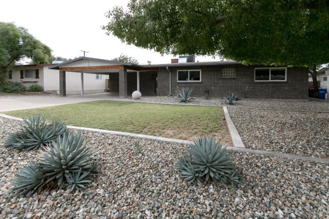 1219 E Seldon Lane, Phoenix, AZ 85020 (MLS #5847155) :: Yost Realty Group at RE/MAX Casa Grande