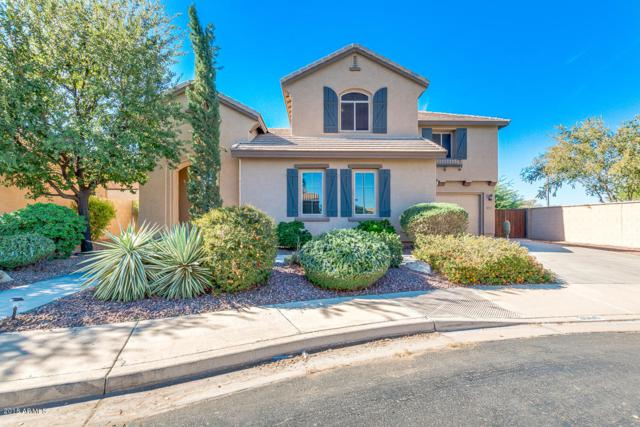 3060 S Nash Way, Chandler, AZ 85286 (MLS #5847156) :: The Daniel Montez Real Estate Group