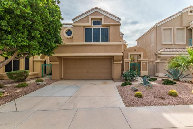 16058 S 11TH Place, Phoenix, AZ 85048 (MLS #5847226) :: Power Realty Group Model Home Center