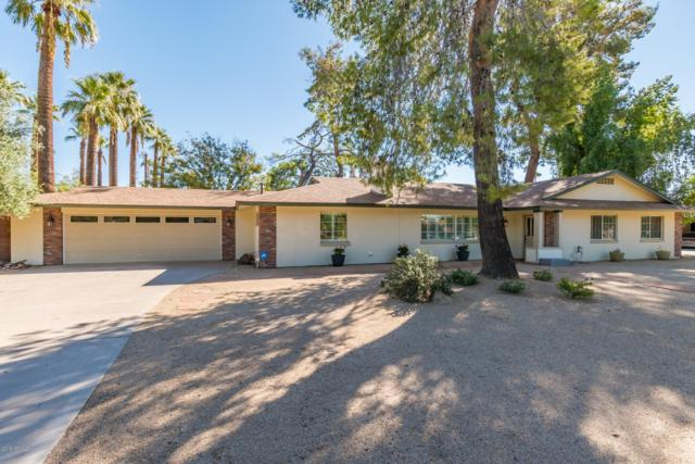 7539 N 15'TH Avenue, Phoenix, AZ 85021 (MLS #5847227) :: Yost Realty Group at RE/MAX Casa Grande